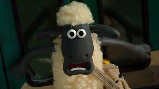 Home Sheep Home -