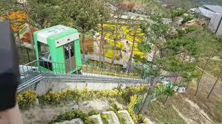 대한민국을 힐링하다 산청동의보감촌 한의학박물관 황금장수…