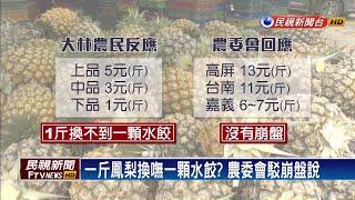 「鳳梨價低」嘉義果農發難 農委會南下消毒-民視新聞