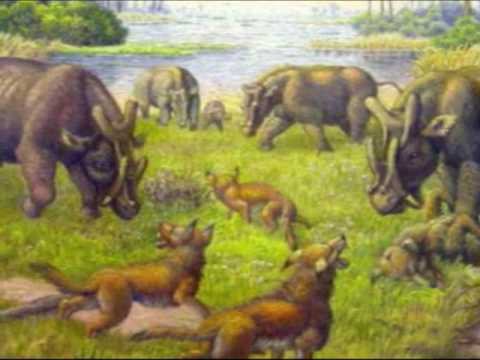 The 10 Deadliest Prehistoric Mammals  ThoughtCo