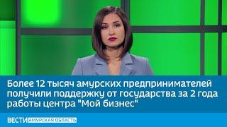 Более 12 тысяч амурских предпринимателей получили поддержку от государства