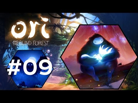 Ori and the Blind Forest: Definitive Edition #9 - Black Root Burrows