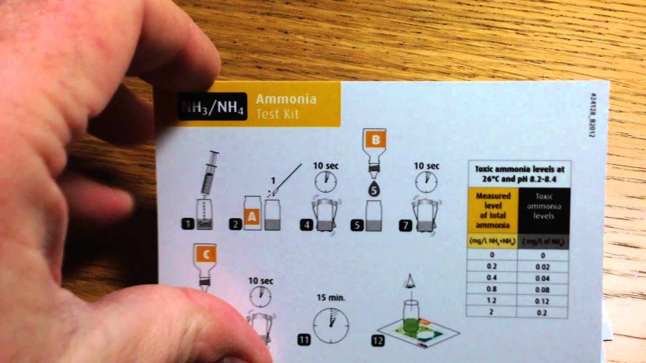 how to find the mass of amonia and water