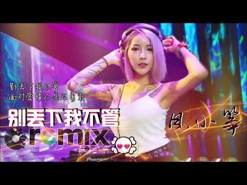 风小筝 - 别丢下我不管 【DJ REMIX 舞曲 | 女声版本 🎧】最新热爆