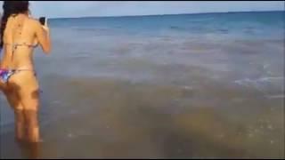 Hoje em Recife tubarão quase na areia😲