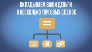 видео реферат регистрация оффшорной компании
