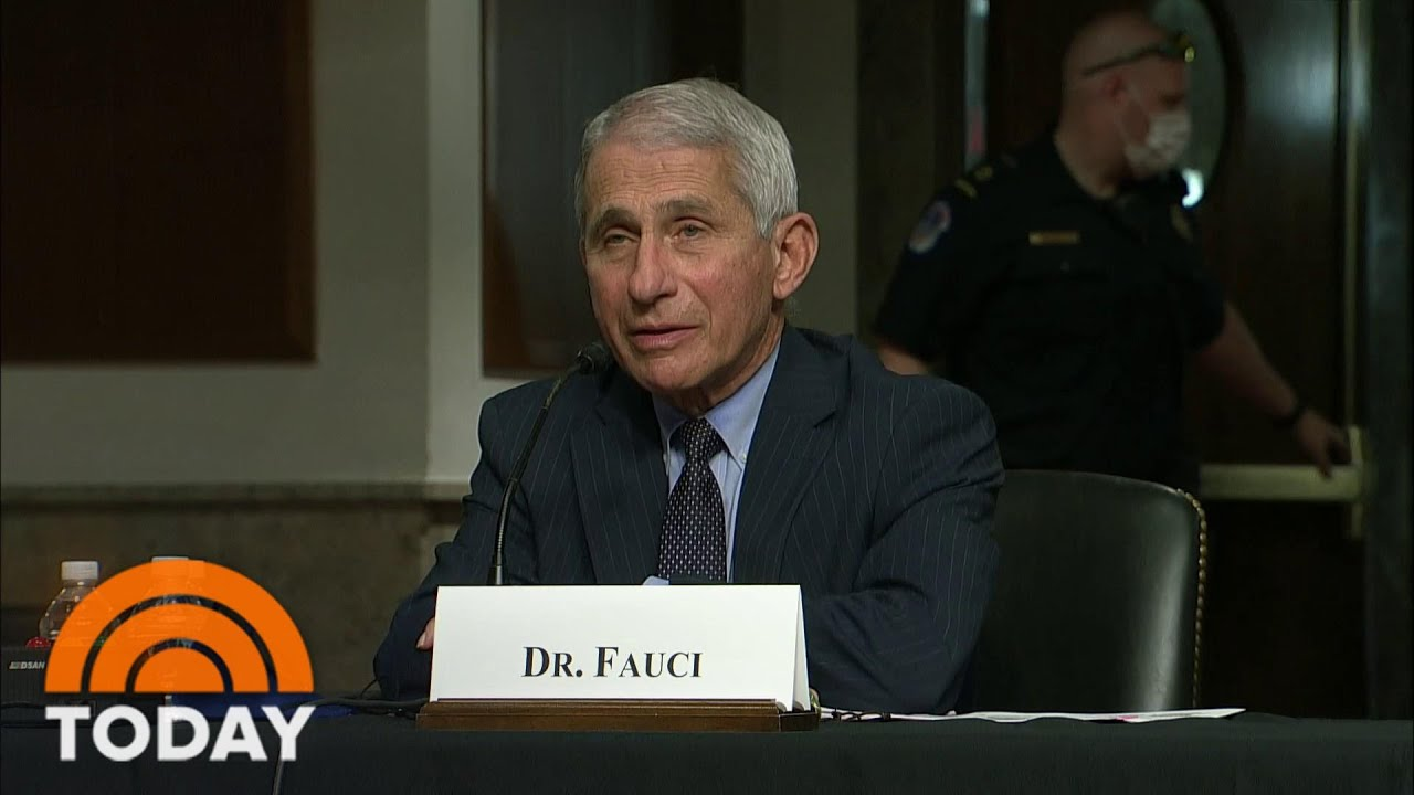 Rand Paul clashes with Fauci over coronavirus origins | TheHill