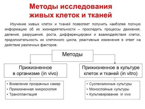 Методы цитологии. Клеточная теория. - YouTube