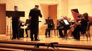 Vivaldi Four Seasons - Winter 1st Movement - Allegro non molto-1/1
