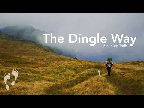 The Dingle Way 👣 3 Minute Trails