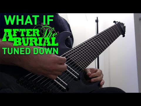 what if after the burial tuned down? 10 string guitar riff compilation