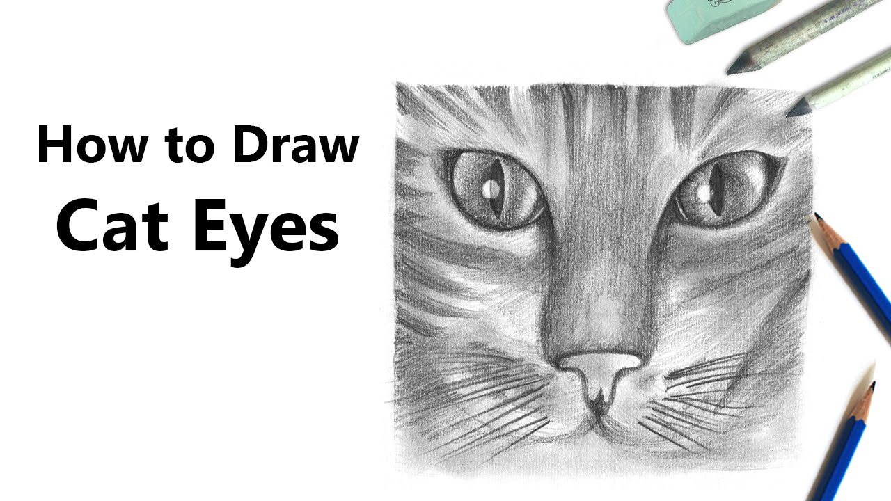 How to Draw Realistic Cat Eyes with Pencil [Time Lapse ...