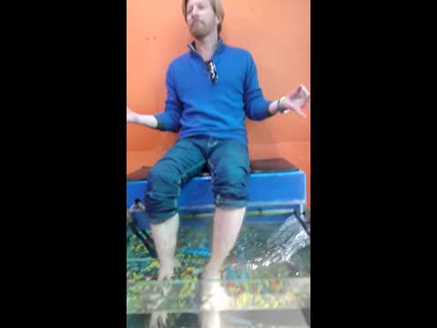 Hollywood actor David Wenham promoting fish spa vashisht manali