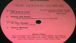 Don Juan Benito - In The Jungle (The Second Coming) 1995 SOUND EXPRESS RECORDINGS