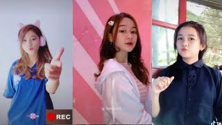 Download Kumpulan Tik Tok DJ Tiap Hari Bangka Dada (Versi Jedang Jedug) Viral 2021 DJ Welot Welot Kang Copet