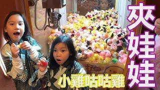 夾娃娃機日誌 小雞咕咕雞 我們在日本的溫泉飯…