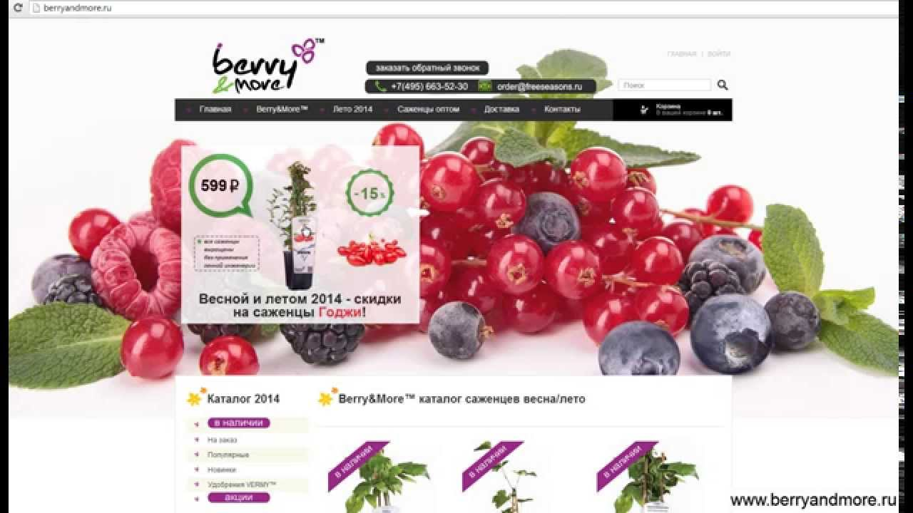 Купить саженцы ягодных кустарников недорого в интернет-магазине оби. Выгодные цены на плодово-ягодные кустарники. Доставка по москве, санкт петербургу и россии.