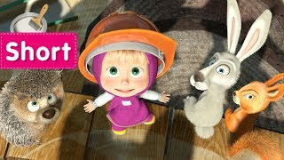 Masha and The Bear -  Home Improvement ⚙️  (Let me drive!)