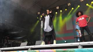 Download Alo Wala live at World Village Festival 2016 in Helsinki (UHD) MP3 song and Music Video