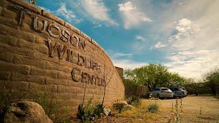 Tucson Wildlife Center | Mrs Green's World