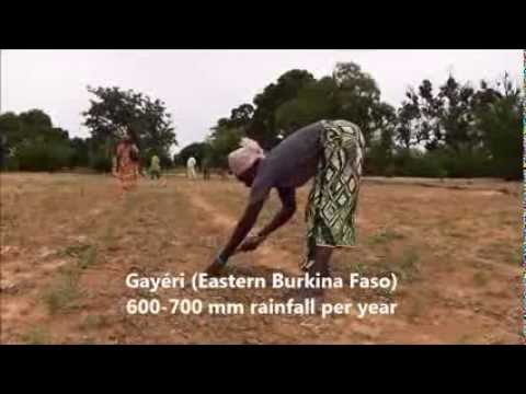 more with less : agroecology in Burkina Faso