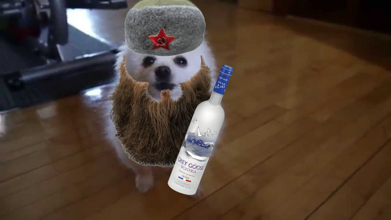 In Soviet Russia You Bark At Dog