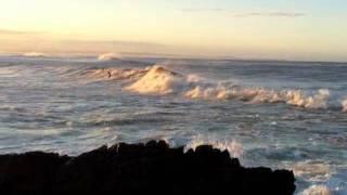 Beach Bums Cafe Surf & Beach Report
