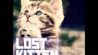 k flay lost kitten metric cover
