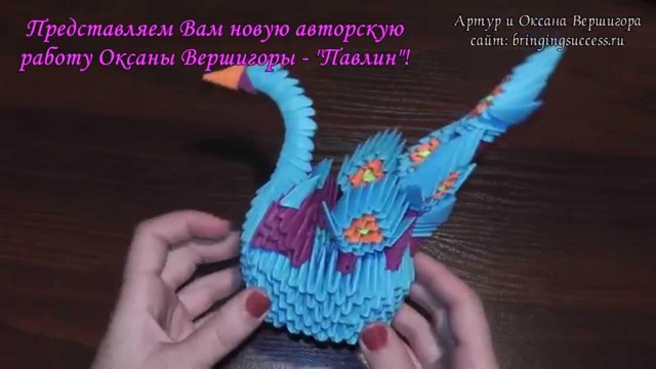 модульное оригами цветной попугай схема и фото