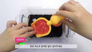 검정콩으로 만드는 나만의 테마 파크 ! 곡물 촉감놀이,…