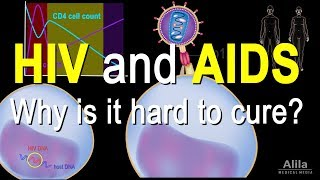 Video HIV and AIDS: Infection Stages, Pathology and Treatment, Animation download MP3, 3GP, MP4, WEBM, AVI, FLV September 2018