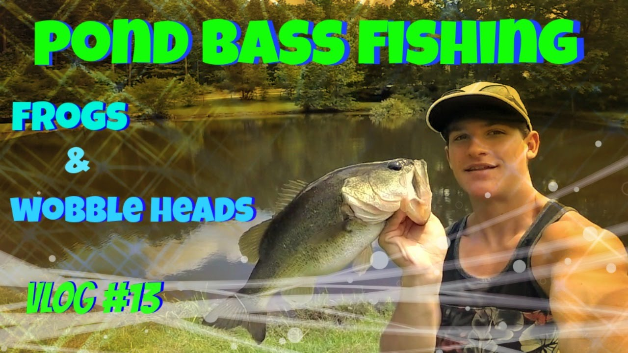 Pond bass fishing tips topwater frogs wobble heads for Pond fishing tips
