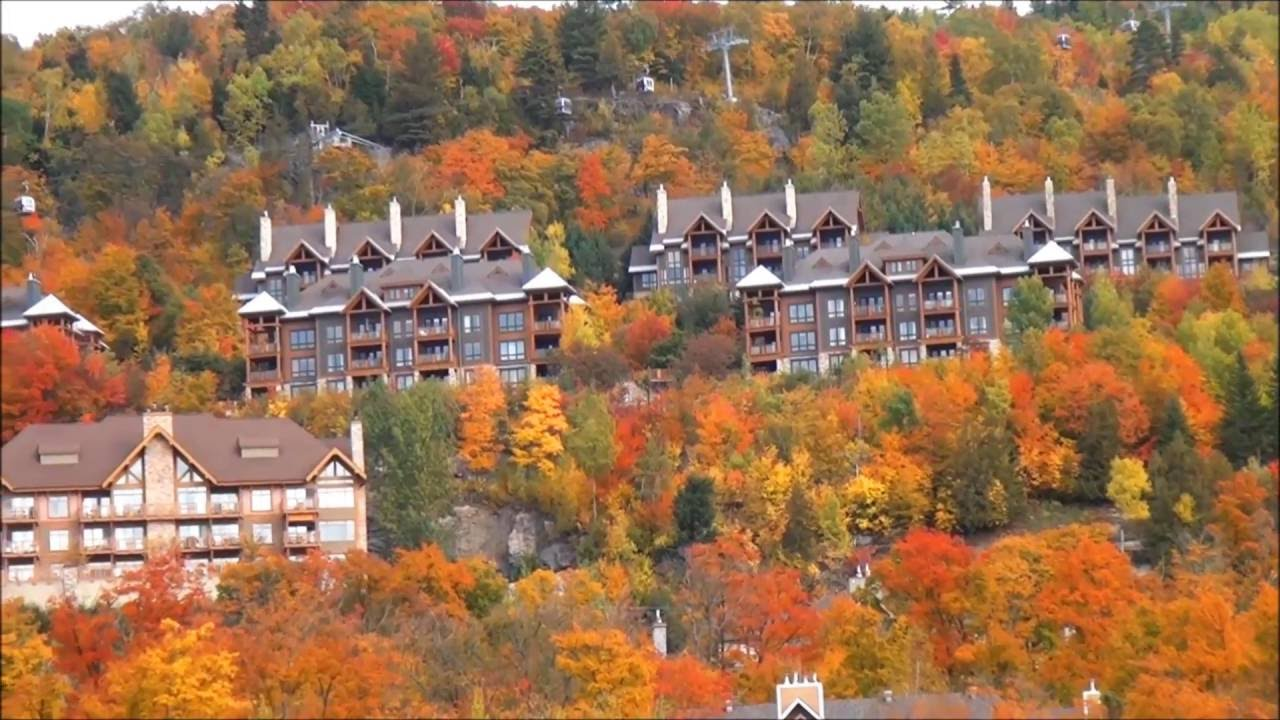 Quebec is beautiful dressed in it's fall colours.