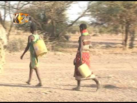 Fighting Back Hunger: Gov't to launch cash payout to pastoralists to purchase fodder, animal feed