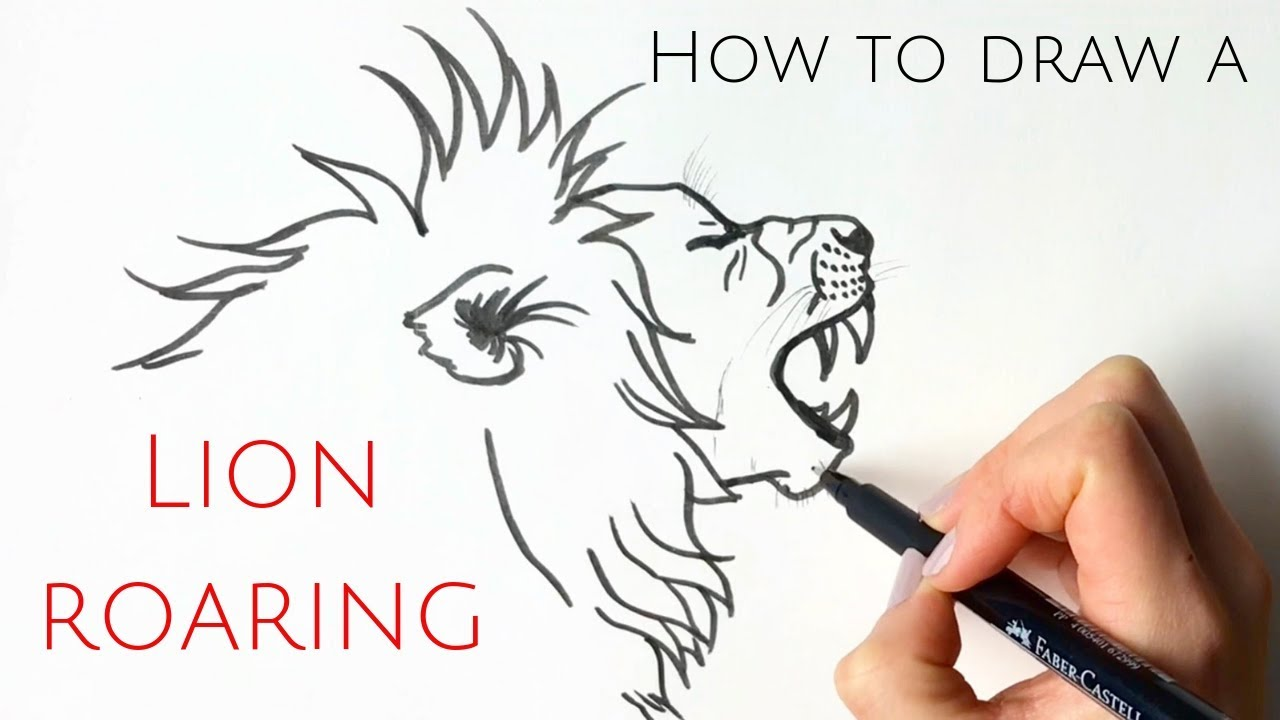 How To Draw A Lion Roaring For Beginners Youtube Learn how to draw lion head outline pictures using these outlines or print just for coloring. how to draw a lion roaring for beginners