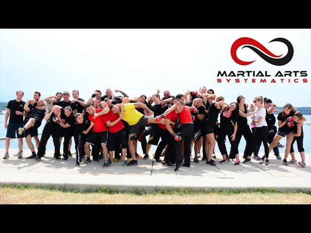 Martial Arts Systematics Sommercamp 2017