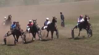 Бега в Краснотуранске 7 заезд 2015(Лошади-Horse–Animal-racing-конь-смотреть-онлайн-скачки)