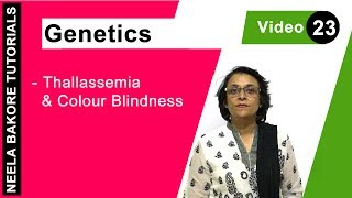 Genetics - Thallassemia & Colour Blindness