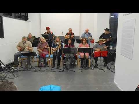 The Sleaford Ukulele Band at The NCCD event   30...11...2013