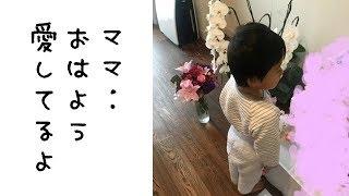ママもきっと喜んでいるでしょうね^^ 市川海老蔵 「朝の挨拶してます」...
