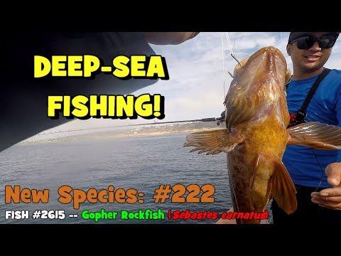 EPF Goes DEEP-SEA FISHING!!! (Major Fail) (Give-Away Included!)