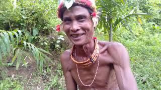 Ngobrol Hangat Bersama Sikerei Yang Sedang Meramu Obat Tradisional