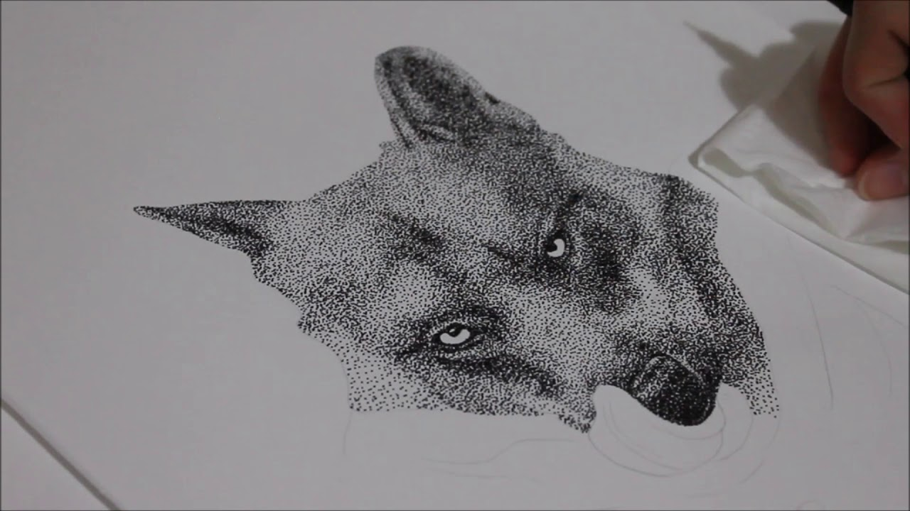 Stippling Drawing Wolf Youtube