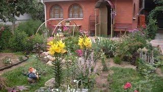 видео Варианты устройства оригинальных цветочных клумб из подручных материалов