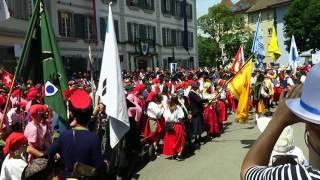 Lenzburger Jugendfest 2016 mit Freischarenmanöver