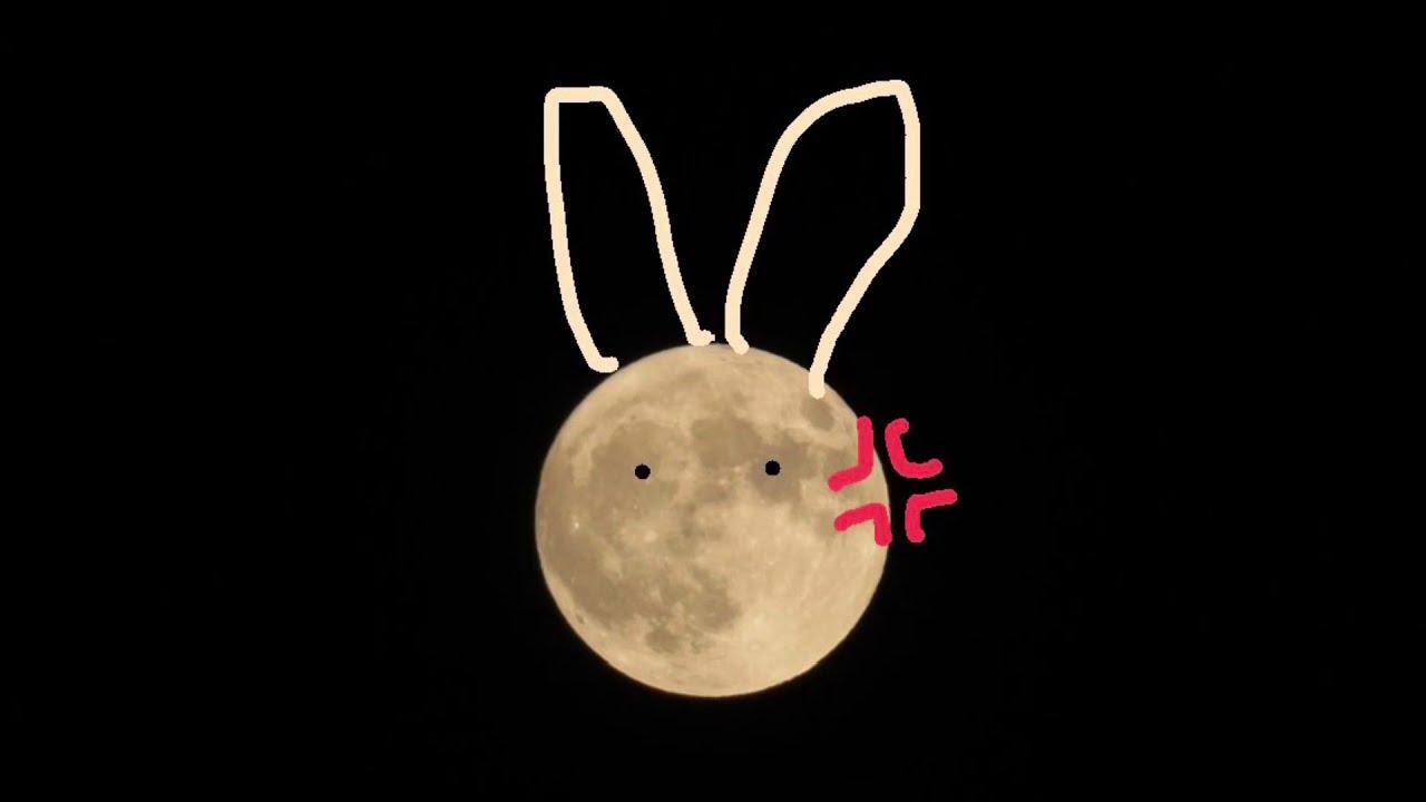 今日 綺麗 こんばんは ね 月 が は です