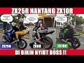 Ngerasa Moge Zxr Ini Digeber Zxr Nyiut Parah Zxr Bro Omen Naik Darah   Mp3 - Mp4 Download