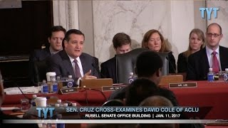 Ted Cruz vs. ACLU at Jeff Sessions Confirmation Hearing Free HD Video