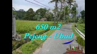 Affordable Bali PROPERTY 650 m2 LAND FOR SALE IN UBUD TJUB522