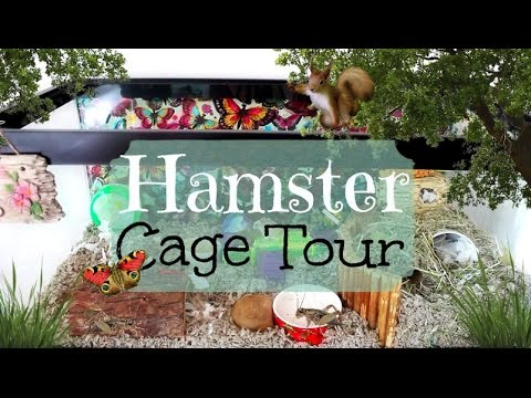 hamster-cage-tour-|-july-2015